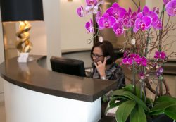 front desk receptionist at Bedford Breast Center, a medical center who offers nipple sparing mastectomy in Beverly Hills, CA